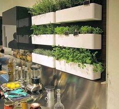 Ideas para mini Huerta en la cocina