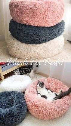 Plüsch Donut Haustierbett - All Things Cats - Donut decor Cute Dog Beds, Pet Beds, Cute Dogs, Animal Room, Fluffy Kittens, Fluffy Dogs, Diy Pet, Kitten Beds, Cat Room
