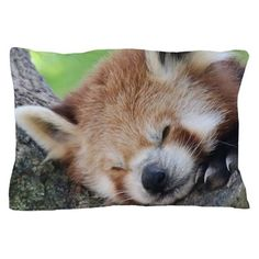 RedPanda20150810 Pillow Case on CafePress.com