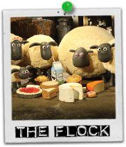 The Flock, Shaun the Sheep's to be exact