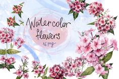 Posted by @newkoko2020 Watercolor flowers set (Phlox) by My art shop on @creativemarket
