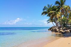 Días de playa todo el año🌴 ✅ Rio Grande, Puerto Rico 📸 @sousa_pr 👥Taggea #tiratepr 👻 Snapchat: Tiratepr Llévate Tu Basura #laspicuas #riogrande #puertorico #caribbeanlife #playa #beach #nature #naturelovers #travel #vacation #travelgram #isladelencanto #photooftheday #descubreelencanto #instadaily #wonderful #photography #tiratepr