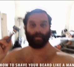 Don't Shave.gif (262×239)