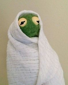 The post appeared first on Kermit the Frog Memes. Kermit The Frog Meme, Funny Kermit Memes, Cute Memes, Stupid Funny Memes, Sapo Kermit, Gavin Memes, Sapo Meme, Current Mood Meme, Watch Episodes