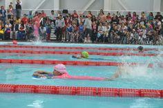 Todo un éxito el II Encuentro anual de Albercas Municipales en Ags ~ Ags Sports