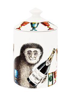 Fornasetti şampanya maymun kokulu mum