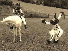 Curious Company Pierrot and Pierrette dancing horse show Show Horses, Giraffe, Dancing, Entertaining, Animals, Character, Felt Giraffe, Animales, Dance