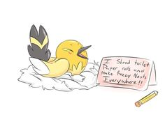 pokemon shamings