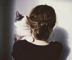 #bun and cat