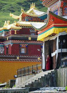 Nyingmapa Sherda college near Lhagang,Tibet