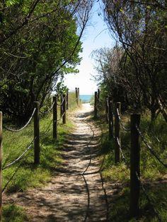 Tahunanui Beach Nelson, New Zealand The Beautiful Country, Beautiful World, Beautiful Places, Beautiful Scenery, Places Around The World, Around The Worlds, Nelson New Zealand, South Island, What Is Like