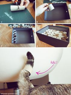 Make one stone 2 shots with this super DIY … Want to stimulate your cat? Make one stone 2 shots with this super DIY … Bb Chat, Cat Tent, Diy Cat Toys, Cat Room, Cat Crafts, Cat Furniture, Diy Stuffed Animals, Dog Cat, Playground