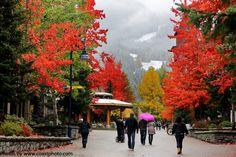 Whistler Blackcomb October 20th