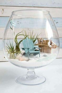 DIY Beachy Air Plant Mini Garden Terrarium – Sustain My Craft Habit - The Cutest DIY Fairy Garden! Learn How To Make A Beach Mini Garden Terrarium Imágenes efectivas que - Seashell Crafts, Beach Crafts, Diy And Crafts, Beach Themed Crafts, Seashell Projects, Simple Crafts, Cork Crafts, Upcycled Crafts, Homemade Crafts