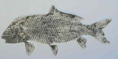 Gyotaku Fish Rubbing - wikiHow