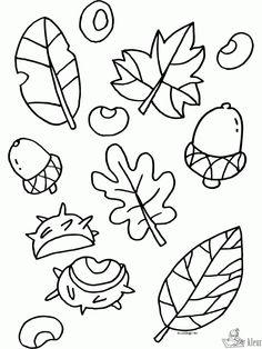 Afbeeldingsresultaat voor kleurplaat herfst Autumn Crafts, Nature Crafts, Fall Halloween, Halloween Crafts, Diy For Kids, Crafts For Kids, Crafts For 2 Year Olds, Calendar Pictures, Pattern Coloring Pages