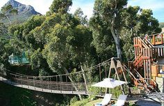 Even bridges are necessary in some gardens: Camps Bay Retreat Luxury Hotel in Cape Town Cape Town Accommodation, Cape Town Hotels, View Image, To Go, Camping, Luxury, Bridges, Places, Outdoor Decor