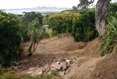 The Secret Garden.   Cleared of debris, and ready to receive topsoil and excavated material from the building side.  Development of this area with fruit and native trees, vegetable gardens (and other specimens), and hopefully chooks will comprise phase 2 of the project.