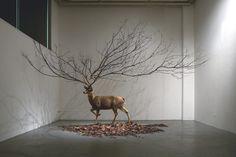 Installation Art | Myeongbeom Kim