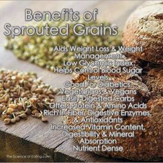 Benefits of Sprouted Grains: - Aids weight loss & weight management - Low Glycemic Index - Helps control blood sugar levels - Good for diabetics, vegetarians, and vegans - Easiy digested carbs - Offers protein and amino acids - Rich in fiber, digestive enzymes, and antioxidants - Increased vitamin content - Digestibility and mineral absorption - Nutrient dense