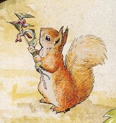 Children Illustration Watercolor Beatrix Potter 68 New Ideas Beatrix Potter Illustrations, Beatrice Potter, Peter Rabbit And Friends, Motifs Animal, Tatty Teddy, Children's Book Illustration, Squirrel Illustration, Illustrators, Cute Animals