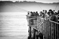Busy pier - pink salmon season by Tamas Fekete on 500px