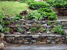 Levelled garden