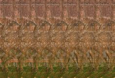 Magic, Illusion And Our Minds Hidden 3d Images, Hidden Pictures, Magic Eye Pictures, 3d Pictures, Magic Illusions, Cool Optical Illusions, 3d Stereograms, Blurry Eyes, Eyes Game