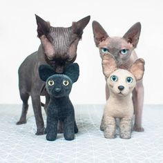 Two cute sphynx kitties and their fluffy stuffed friends.