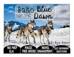 Balto of the Blue Dawn Text Dependent Questions Text Dependent Questions, Magic Treehouse, Great Novels, Compare And Contrast, Read Aloud, Book Activities, Second Grade, Phonics, Dawn
