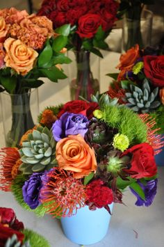 Succulents with Jewel-toned flowers