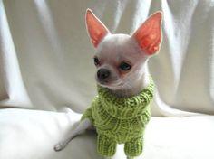 Ropa de perro suéter ropa de Chihuahua mascotas por BubaDog