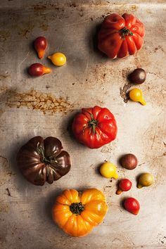 Stunning picture. Many many thanks to all the farmers and foodies who have helped bring back tomatoes of different colors and shapes. Variety is so beautiful...