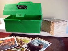 i absolutely cherished my Wildlife Treasury Cards!! i would get so excited every time i'd receive a few more. lol.
