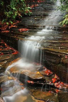 Angel Falls near Lake Rabun in North Georgia ♥ ♥ www.paintingyouwithwords.com
