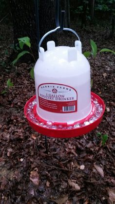 Water for bees : a 1 gallon chicken water container and floral marbles to keep them from drowning