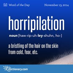 Horripilation - bristling of hair on the skin from cold, fear, etc. Unusual Words, Weird Words, Rare Words, Big Words, Words To Use, Unique Words, Great Words, Powerful Words, Word Nerd