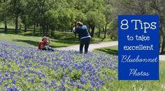 8 Tips for Taking Bluebonnet Pictures | Texas Bluebonnets