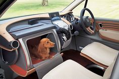 Honda in-Dash Dog Crate .... Genius!