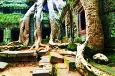 Cambodia Holiday Package from India. Customized Package Tour to Cambodia, Phnom Penh, Siem Reap with Sam San Travels. International Travel Packages in Best rates. Places To Travel, Places To See, Vietnam Tours, Cambodia Travel, Urban Nature, Mysterious Places, Need A Vacation, Angkor Wat, Phnom Penh