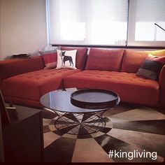 We love the way @Windsorvic's new Felix brings his whole living room life! #KingLiving