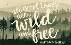 Wild=Free