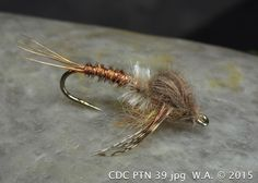 CDC Pheasant Tail Nymph - William Anderson - WilliamsFavorite.com  Nymphs, Soft-Hackles, Wet Flies, Flymphs, Spiders.