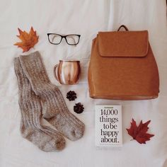 Some fall essentials; warm socks, hot drink, and a good book.