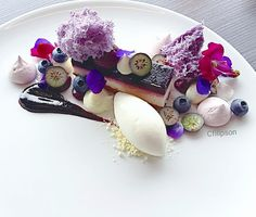 Love the technique of rings of Food Plating Weight Watcher Desserts, Food Design, Food Plating Techniques, Low Carb Dessert, Fancy Desserts, Beautiful Desserts, Modern Food, Culinary Arts, Plated Desserts