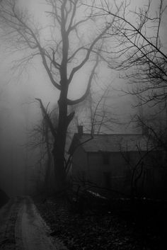 Looks like Silent Hill Downpour