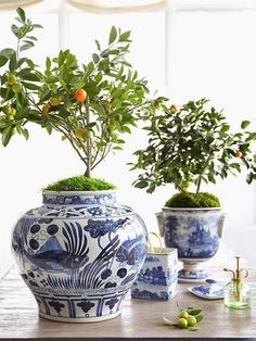 Decorating With Blue and White - A Perennial Spring Favorite! - Hadley Court