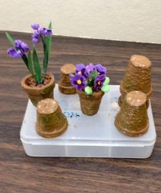tutorial: mini egg carton flower pots