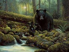 Denis Mayer Jr. Bear Paintings, Wildlife Paintings, Realistic Paintings, Wildlife Art, Art D'ours, Jr Art, Artist Art, Black Bear Cub, Native American Artwork