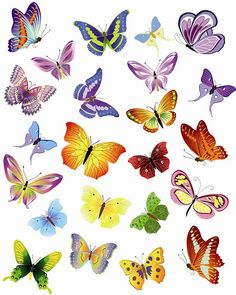 butterfly art                                                                                                                                                                                 Mais